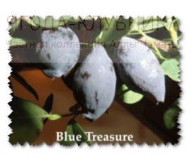 Блю Треже (Blue Treasure)